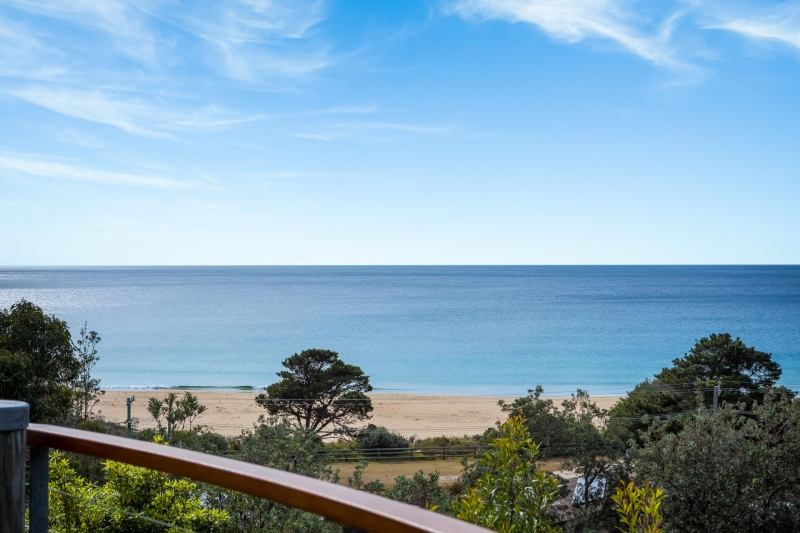 TATHRA INVESTMENT OPPORTUNITY