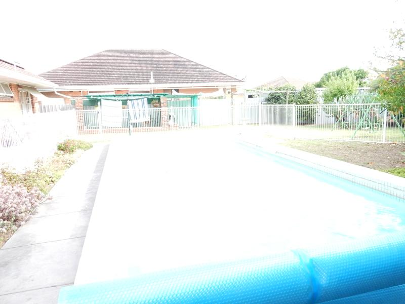 Steve Webber 0418833573 TAKE A YEAR ROUND HOLIDAY IN THIS ENTERTAINER.